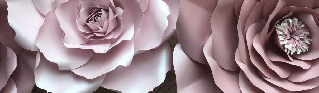 Wall-Flowers-Banner-Image